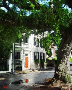 Charleston Art Gallery by Paul Silva