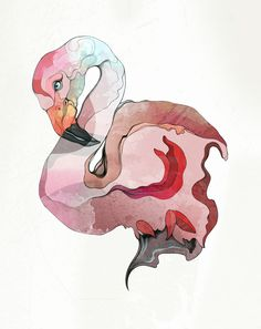 Flamingo by ZSO