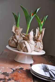 Leuke voorjaarsdecoratie: tulpen verpakt in jute. burlap, party favors, roots, dinner parties, garden parties, bulbs, tulips, centerpieces, flower