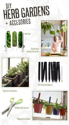 Herbal ideas.