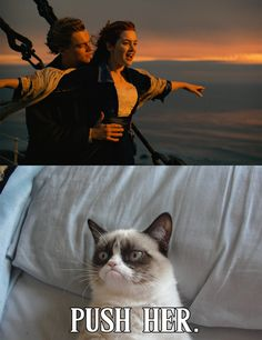 Grumpy Cat Watches Titanic