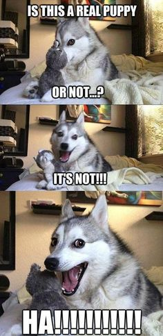I laughed too hard at this..