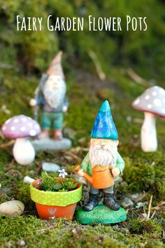 Make Gnome and Fairy