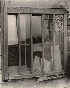 "Alfred Stieglitz, ""Window [Lake George]"" (1923)   photograph   gelatin silver print    Source: http://www.sfmoma.org/explore/collection/artwork/13799#ixzz1jCEM8zpG   San Francisco Museum of Modern Art"