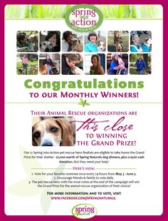 Help us recognize animal advocates! Vote for our Spring Into Action grand prize winner at https://www.facebook.com/SpringNaturals.