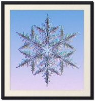 Snowflakes and Snow Crystals