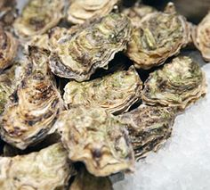 6 Surprising Facts about Oysters : We should all appreciate oysters.