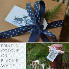 Free printable gift tags from Decorator's Notebook blog   15 vintage flora and fauna designs in colour or B&W
