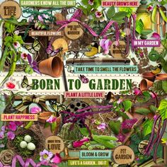 A beautiful garden themed scrapbook collection from Raspberry Road.