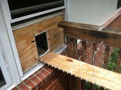 outside cat enclosure | Version 1: