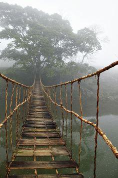 rope bridg, the bridge, path, vietnam, ropes, bridges, place, walk, island