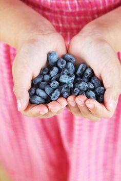 EAT HEALTHY Blueberries