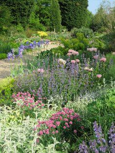 flower border, chatto garden, gravel gardens, au jardin, garden pictur, chatto gravel, dri garden, garden delight, beth chatto