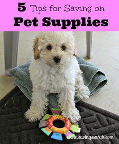 Five Tips for Saving on Pet Supplies #petsupplies #petgear #pets #dogs #cats -Earning and Saving with Sarah Fuller