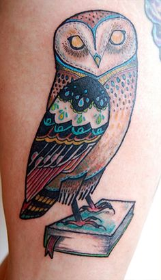 books, patterns, david hale, colors, athens, barns, cousins, owl tattoos, barn owls