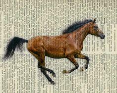 vintage horse print
