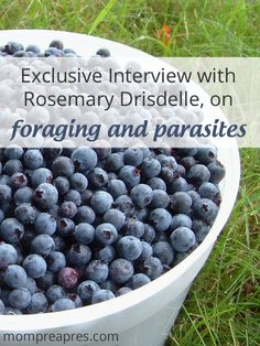 Foraging and Parasites - What wild foods are likely to be affected?