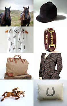 Everyday Equestrian