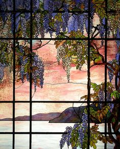 A stained glass window, wisteria blooming enchantment!