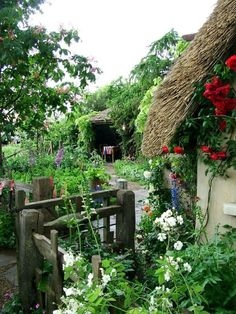 Thatch roof and garden.