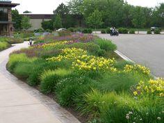 Roy Diblik, co-owner of Northwind Perennial Farm in Burlington, WI designed the gardens in front of the Grand Geneva Resort in Lake Geneva, WI. Photo by Roy Diblik