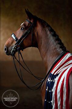 anim, flags, dressage, horses, american beauty, 4th of july, team usa, equestrian, kentucky