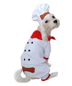 White Chef Dog Costume #zulily #zulilyfinds