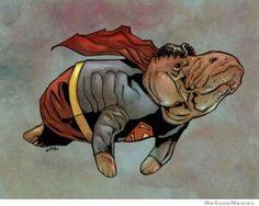 10 Superheroes As Manatees