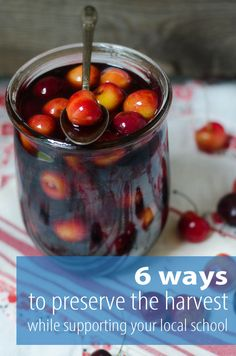 Six ways to preserve
