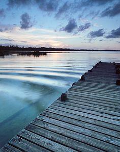Film Photo By: Eduardo Romero  Tortuguero Lagoon - the only natural freshwater lagoon in Puerto Rico, which contains about 708 million gallo...