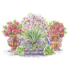 Create a Romantic, Formal Container Garden