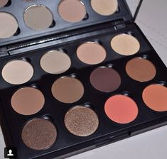 The Morphe individual eyeshadow are only $2 a piece and more pigmented than most MAC eyeshadows!! Amazing!