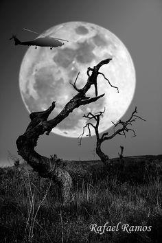 ...hechizo de luna... by Rafael Ramos Fenoy on 500px