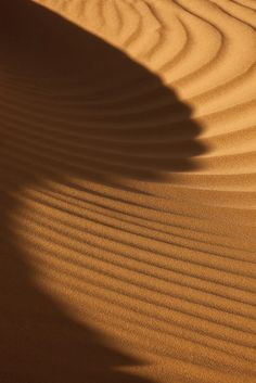shadow on dunes