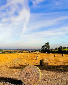 Harvest time in South Yorkshire A picture of: South Yorkshire, Micklebring