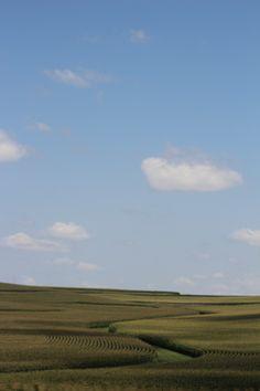 Iowa, pretty much all you see :)