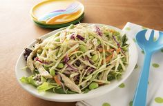Asian Chicken Salad | Packed with veggies, something the whole family will love!