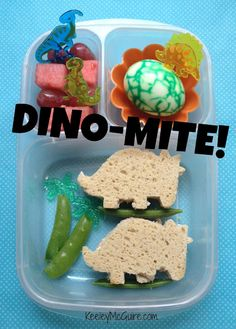 A School Lunches that is DINO-MITE! Love the egg.