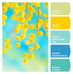 Paint colors from Ch