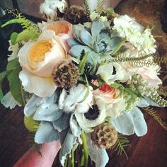 Another recent bouquet. Can't see it but it contains pears and apricots!  #weddingbouquet #brancheseventfloral #utahweddings #peachbouquet #succulentbouquet http://www.russwholesaleflowers.com/wholesale-succulent-sale  RusswholesaleFlowers.com offers the best wholesale succulent prices available to the public online.  wholesale succulents for bouquets, special events, wreaths, diy and more.  3 different sizes to meet your needs.