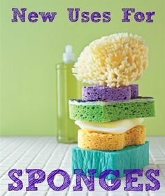 Six new ways to use sponges in the home!