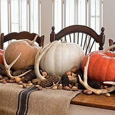 Rustic Centerpiece: Naturally shed antlers lend a new twist to table decor. Pile them up with different-colored pumpkins, pine cones, and loose nuts and bring the outdoors in.