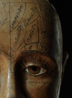 Phrenology head, by unknown wood carver, ca. 1870