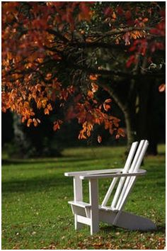 Free DIY Garden Furniture Plans - Use any of hundreds of free, do it yourself woodwork project plans to build your own garden benches, swings, Adirondack furniture, picnic tables and more.