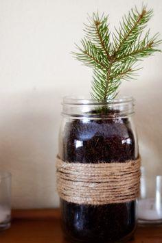 little christmas tree for a desk