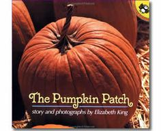 The Pumpkin Patch by Elizabeth King. Fall books for kids.