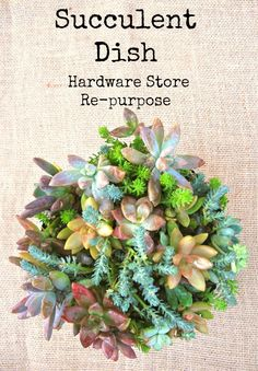 Succulent Dish Repurpose.  Come by  see what I picked up at the hardware store to make this garden.  So easy  inexpensive.  Great hostess or teacher gift www.mysoulfulhome.com