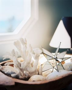 a bowl of white coral and seashells // lonny magazine march april 2012