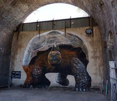 "by The Stencil Shed - ""The Destiny Of Species"" (a gigant tortoise ridden by Charles Darwin) - for City of Colours - Birmingham, UK - Sept 2014"