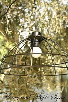 Honey and Maple Syrup: Cage Light For Under $15